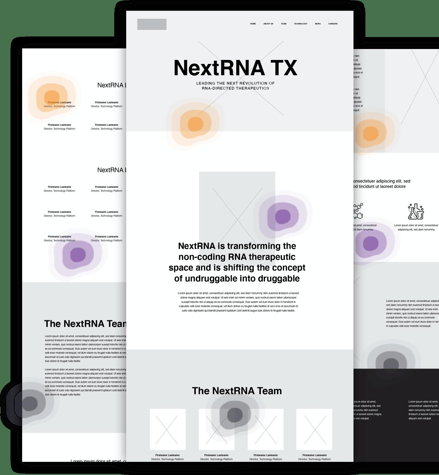 NextRNA wireframes