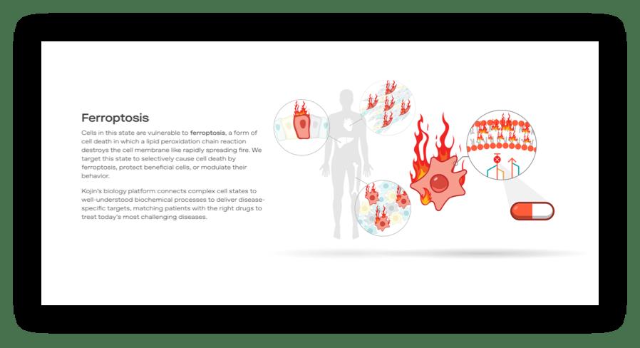 screenshot of Kojin website graphics